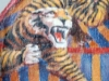05 tigers3